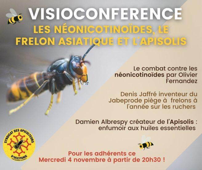Visio-Conférence mensuelle : Les néonicotinoïdes, le frelon asiatique et l'Apisolis.