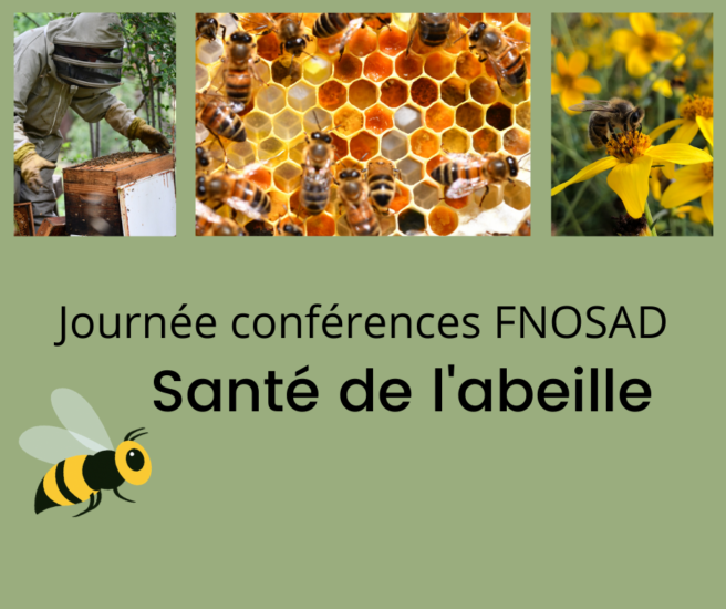 Santé de l'abeille-FNOSAD