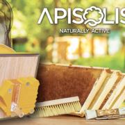 Apisolis